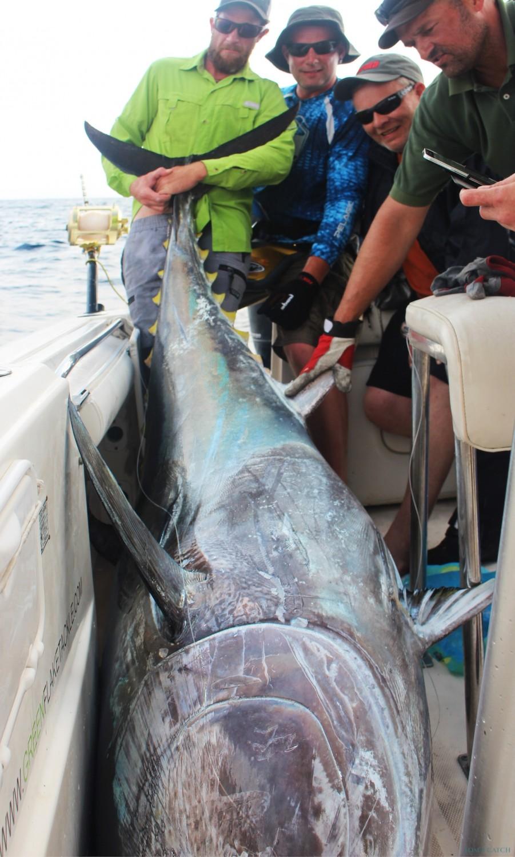Charter de pêche Green Flake
