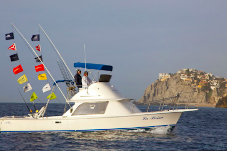 Charter de pêche La Brisa
