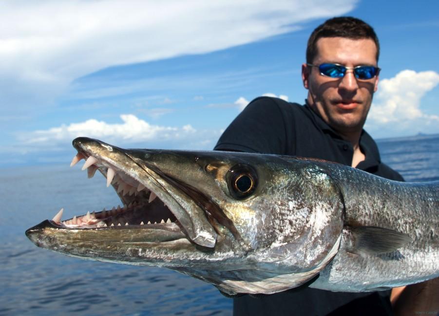 Charter de pêche La Revoltosa