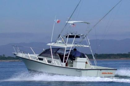 Little Sister Baja California Sur pêche