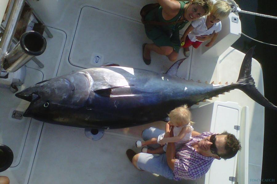Charter de pêche Llobarrete II