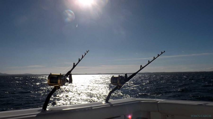 Charter de pêche Mad Max Tiara