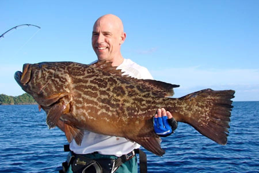 Charter de pêche Mako 22