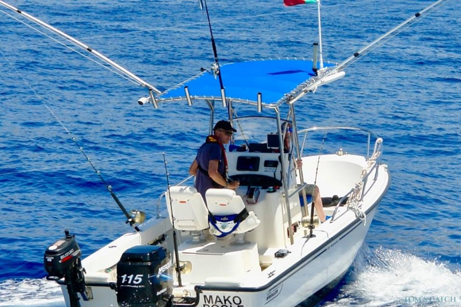 Charter de pêche Mako