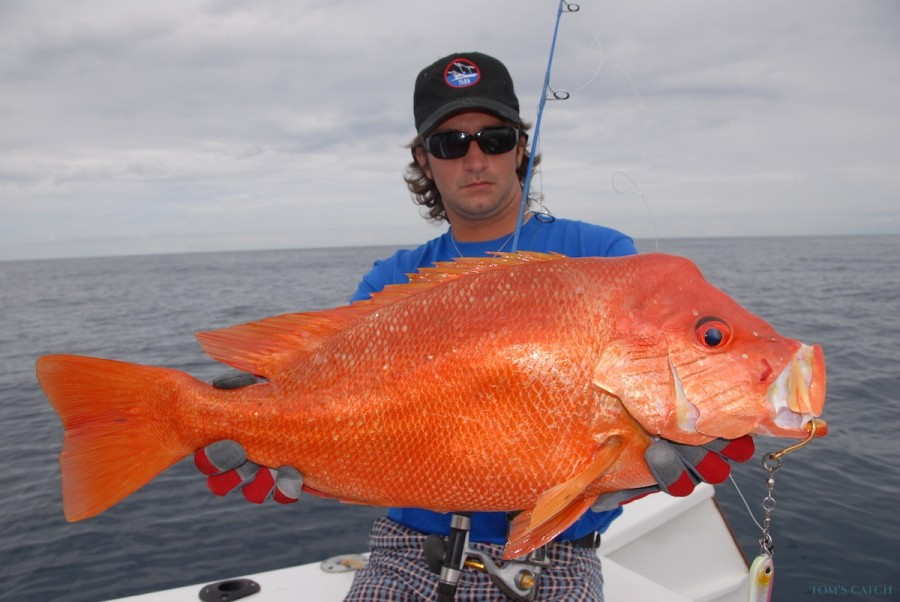 Charter de pêche Manou1