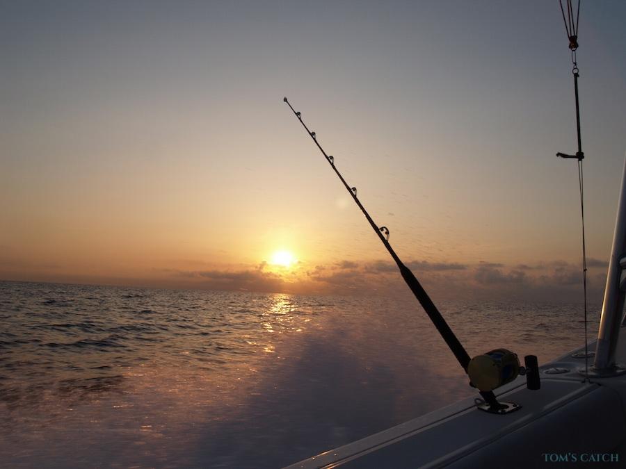 Charter de pêche Mar del Sur