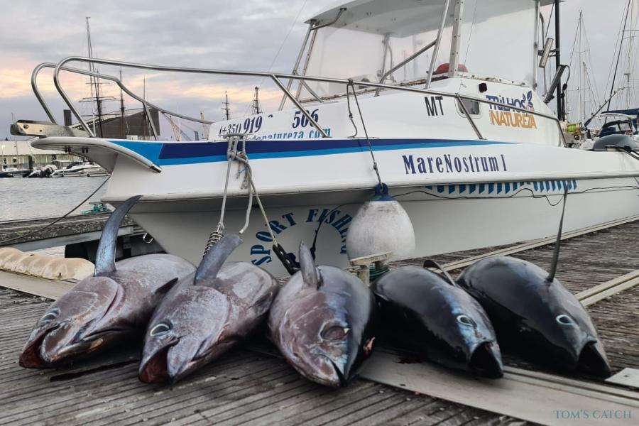 Charter de pêche Mare Nostrum I