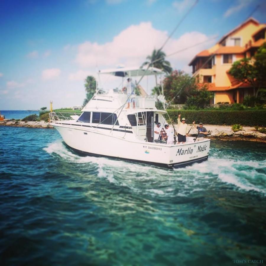Charter de pêche Marlin Magic