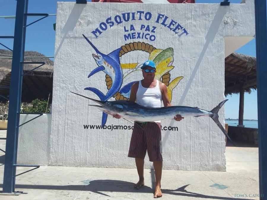 Charter de pêche MV Mambo 5