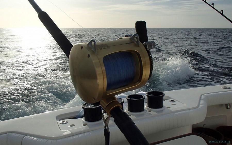 Charter de pêche Mystic Blue