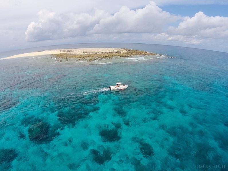 Charter de pêche Nguru