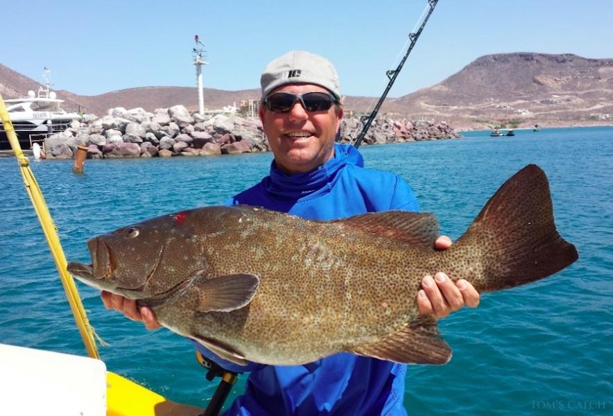 Charter de pêche Open Panga I