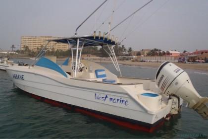Palmer  pêche