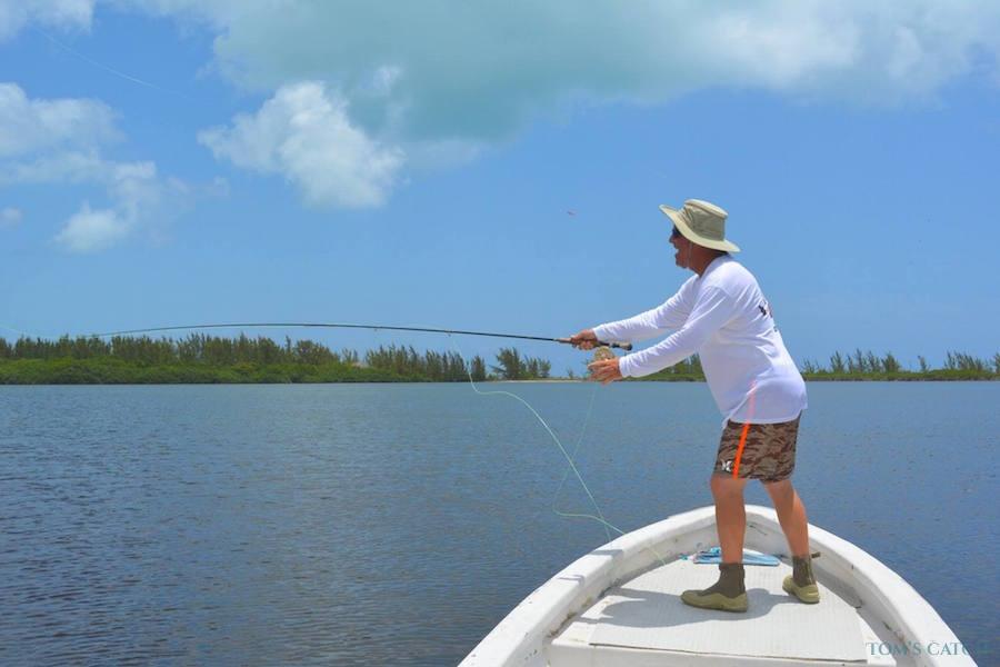 Charter de pêche Panga 23