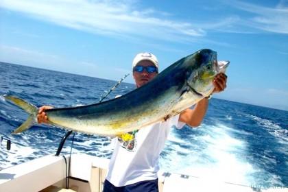Pichona République Dominicaine pêche