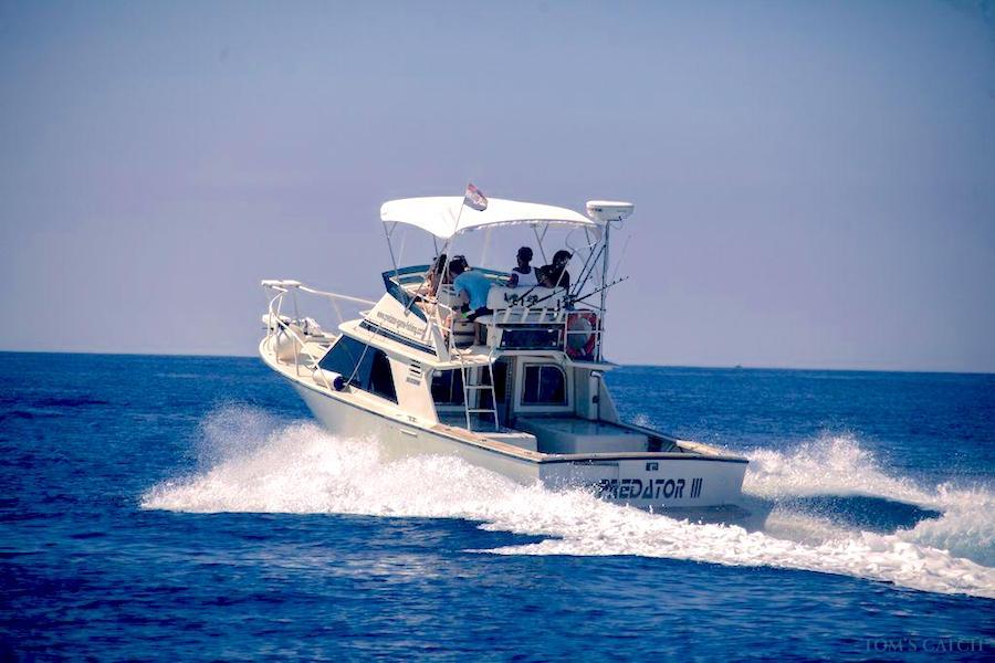 Charter de pêche Predator III
