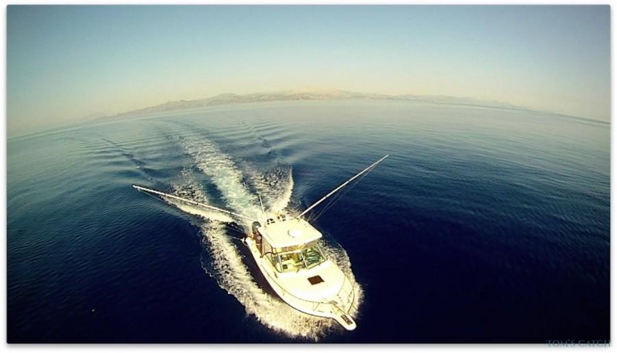 Charter de pêche Pursuit 2570 Offshore