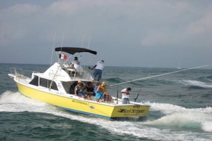 Charter de pêche Reel Stripper
