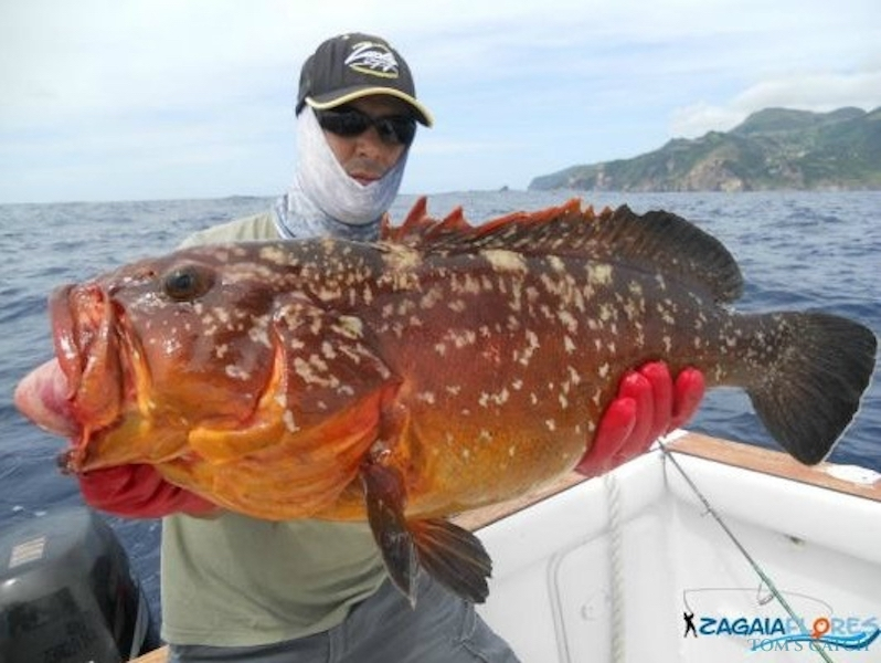 Charter de pêche San Remo