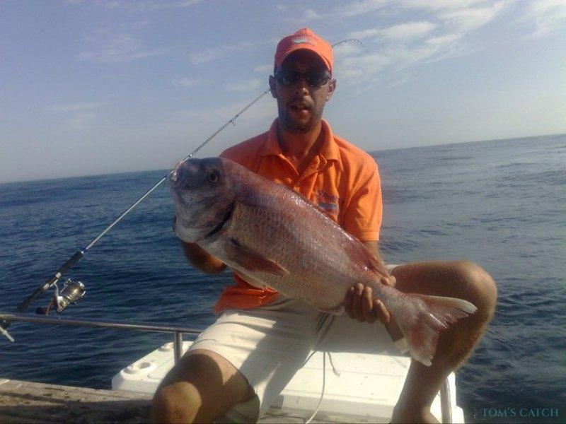 Charter de pêche Silcar 980