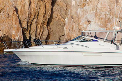Speedwell Baja California Sur pêche