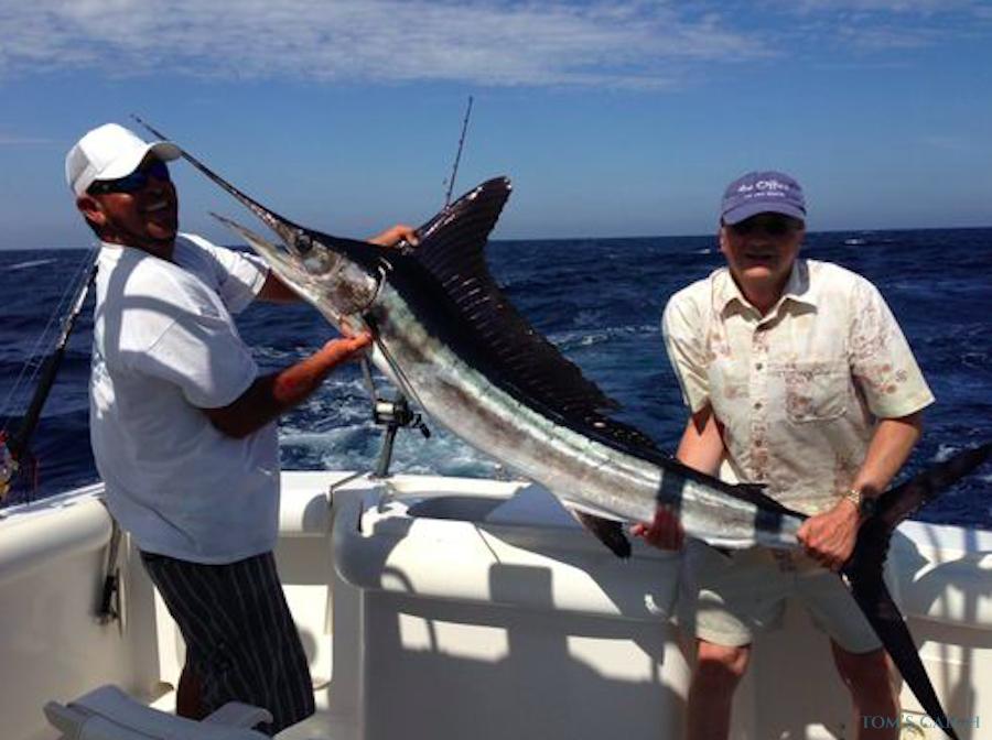 Charter de pêche Speedwell
