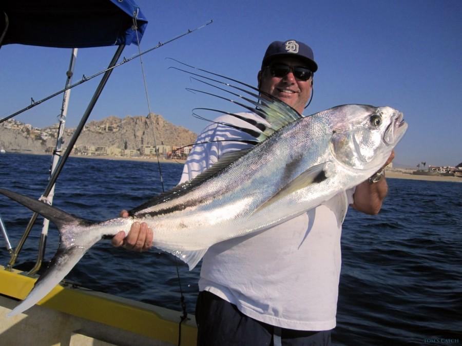 Charter de pêche Super Panga Fleet
