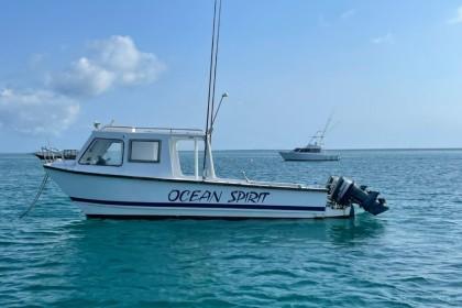 Timimi Zanzibar pêche