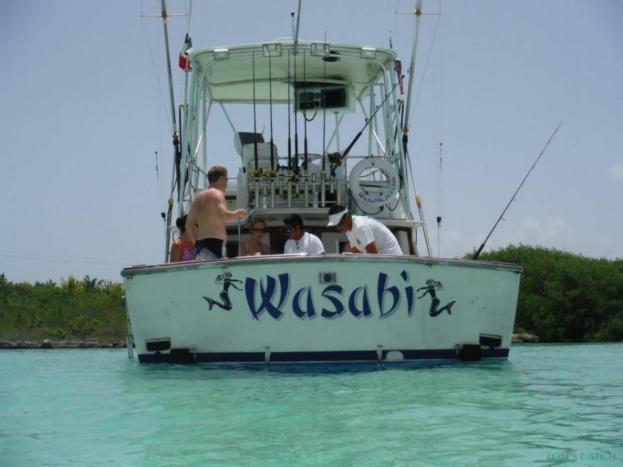 Charter de pêche Wasabi 32 Blackfin