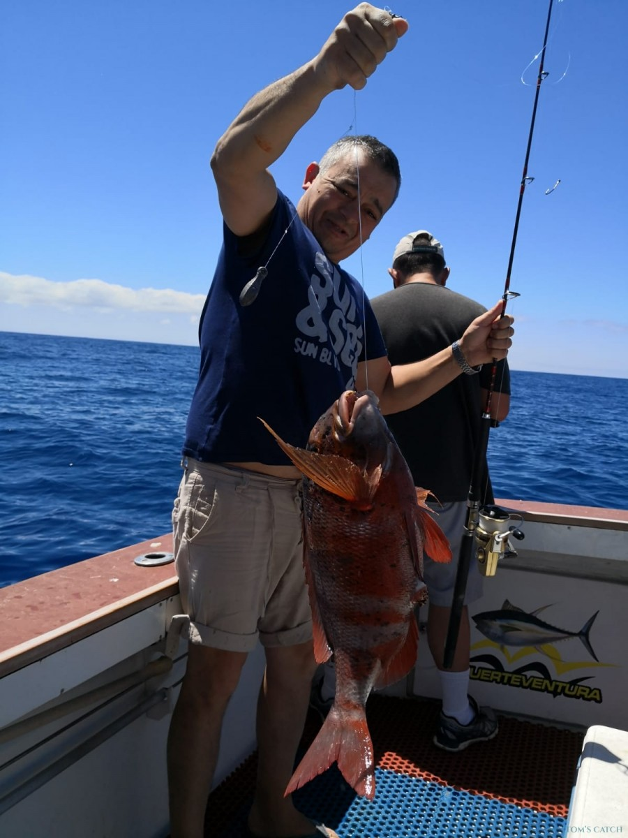 Charter de pêche Yellow Fin 1