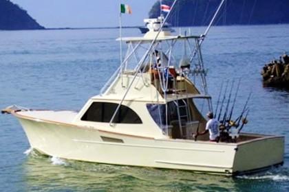 38 D &A Custom Sportfisher  vissen