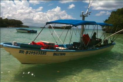 Ballyhoo Dominicaanse Republiek vissen