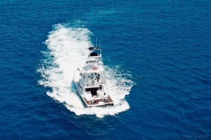 Black Ops Business Queensland vissen