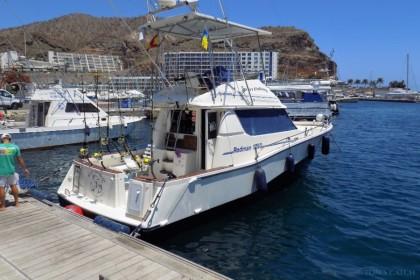 Blue Marlin 3 Puerto Rico de Gran Canaria vissen