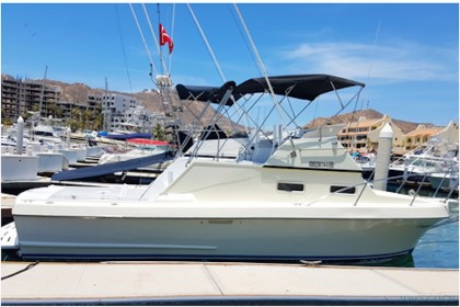 California 28 FT CSL Baja California Sur vissen