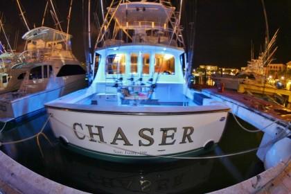 Chaser Punta Cana vissen