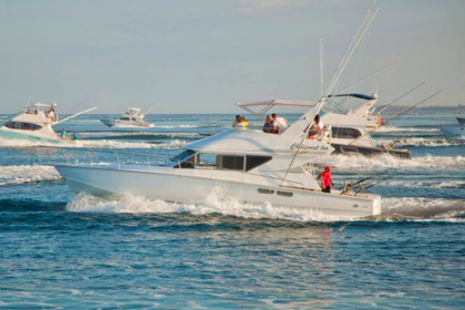 Chilipoint Too Mauritius vissen