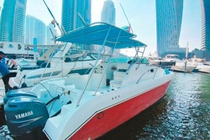 D3-14 Dubai vissen