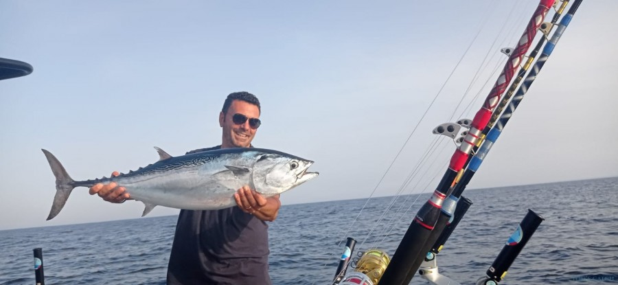 Charters Gommone 850