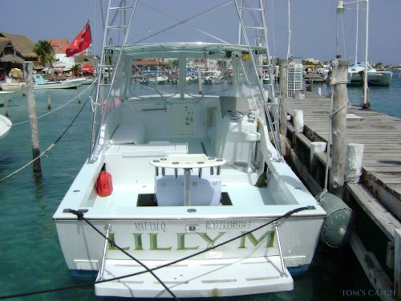 Charters Lilly-M