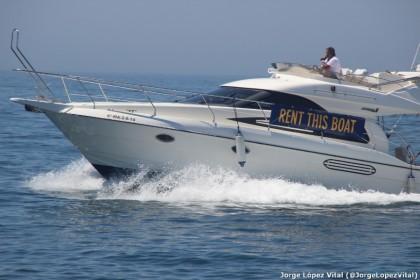 Lovit Charter Marbella vissen