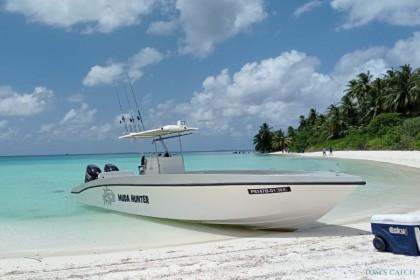 Muda Hunter Malediven vissen