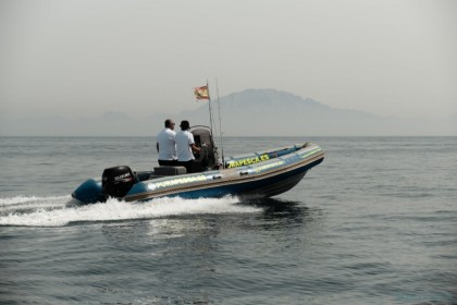 Narwhal 620WB Algeciras vissen