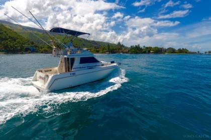 Olphi Nui Tahiti vissen