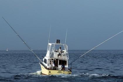 Pace 40 Kaapverdië vissen