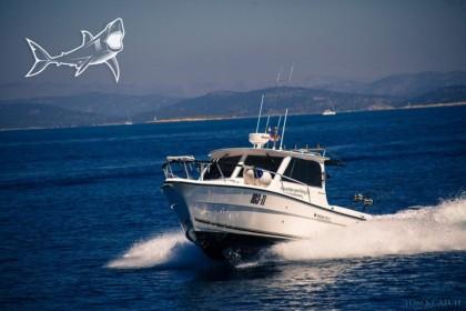 Predator II Kroatië vissen