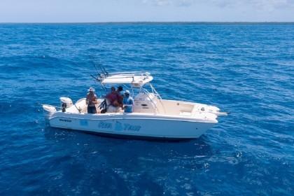 REEL TIME Zanzibar vissen
