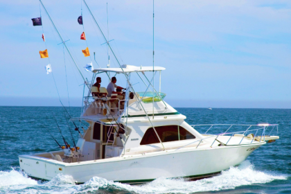 Royal Charters Mallorca Mallorca vissen