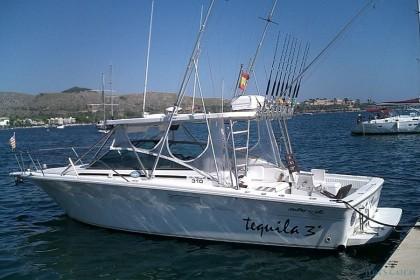 Sea Ray Mallorca vissen