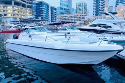 Silvercraft D35 Dubai vissen